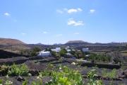 Amatista garden new 180