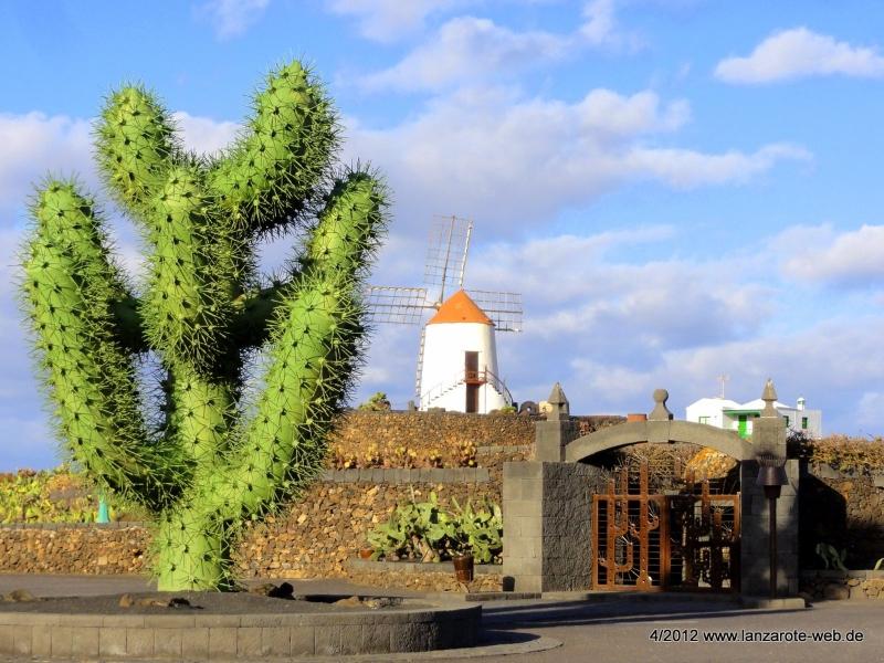 Jardin de Cactus - Touristenzentren von César Manrique