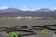 Weinanbaugebiet La Geria Lanzarote