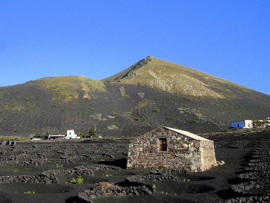 Weinanbau und Bodega Lanzarote
