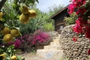 villa-andalusien-gartenhaus (2)