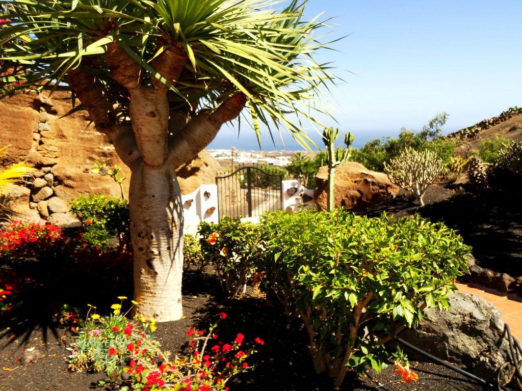 Blick von Castillo Lanzarote 3